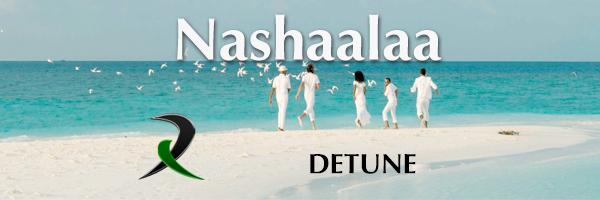 Detune - Nashaalaa (2015) 1080p WEBRip x264-DhiRLS